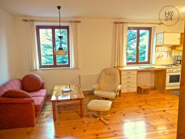 Appartement de 4 pièces à Dresden