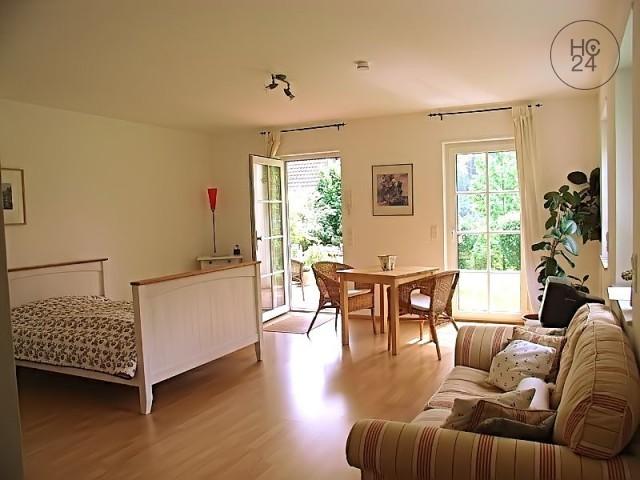 सुसज्जित अपार्टमेंट 1 कमरोँ के साथ HD-Ziegelhausen