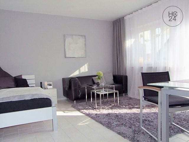 Gemeubileerde woningen met 1 kamers in Heddesheim