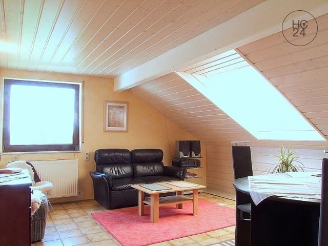 Piso de 2 habitaciones en HN-Klingenberg