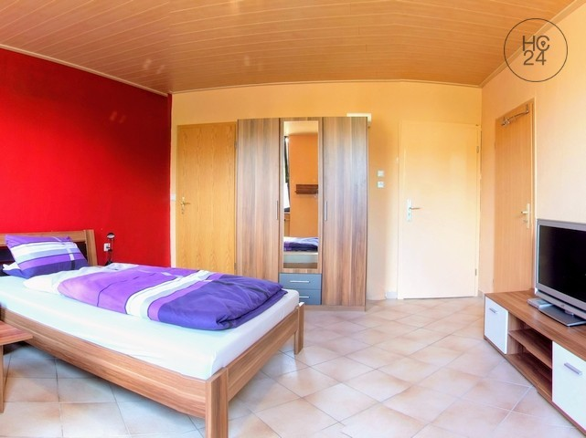 Appartamento arredato con 1 camera a LU-Oggersheim