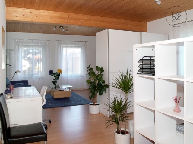 Επιπλωμένη κατοικία με 1 δωμάτιο στο Linkenheim