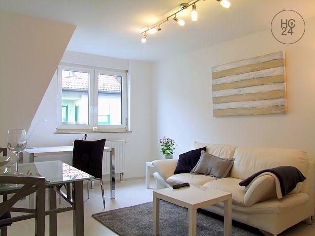 Møblert leilighet med 2 rom i MA-Neckarstadt-Ost