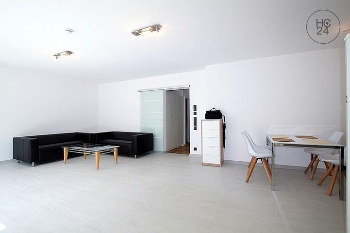 Appartamento arredato con 2 camere a Neuthard