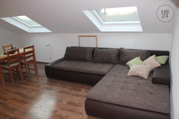 möblierte 2 Zimmer-Wohnung in Eimeldingen