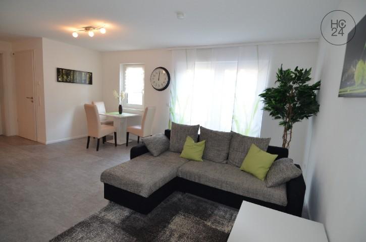 möblierte 2- Zimmer Wohnung in Weil am Rhein - Haltingen
