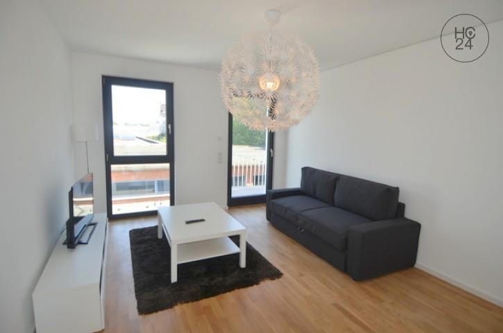 Neu möblierte 3 Zimmer Wohnung in Mainz